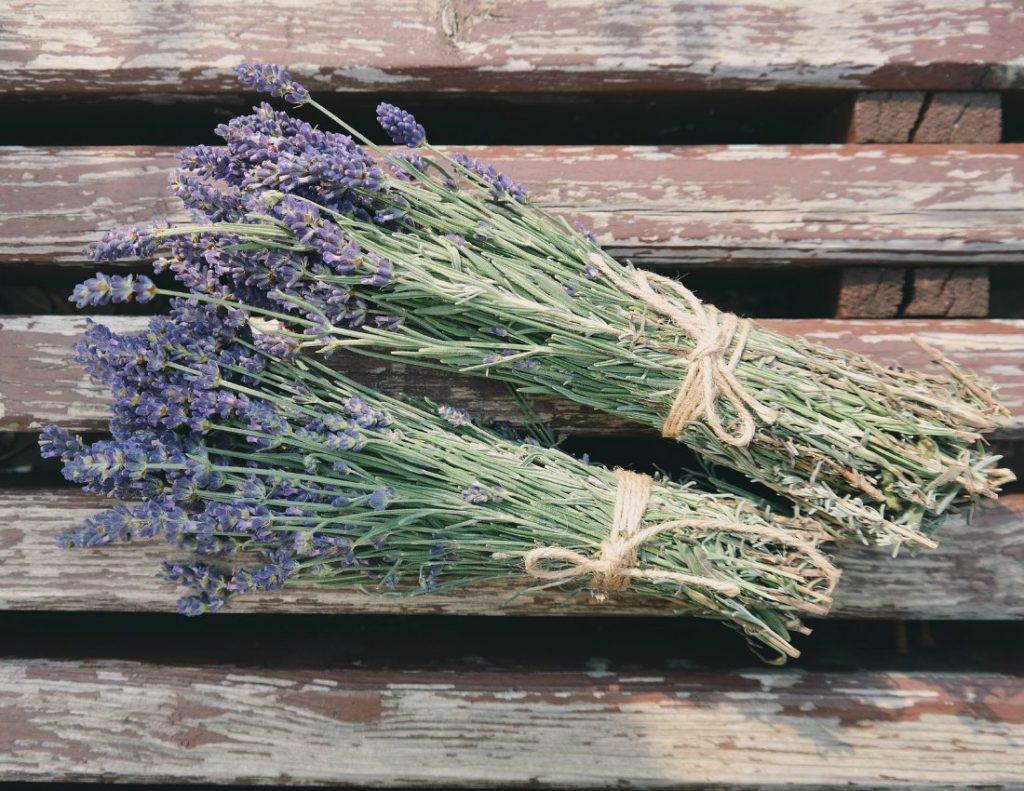 Lavendel seob mürkkemikaale